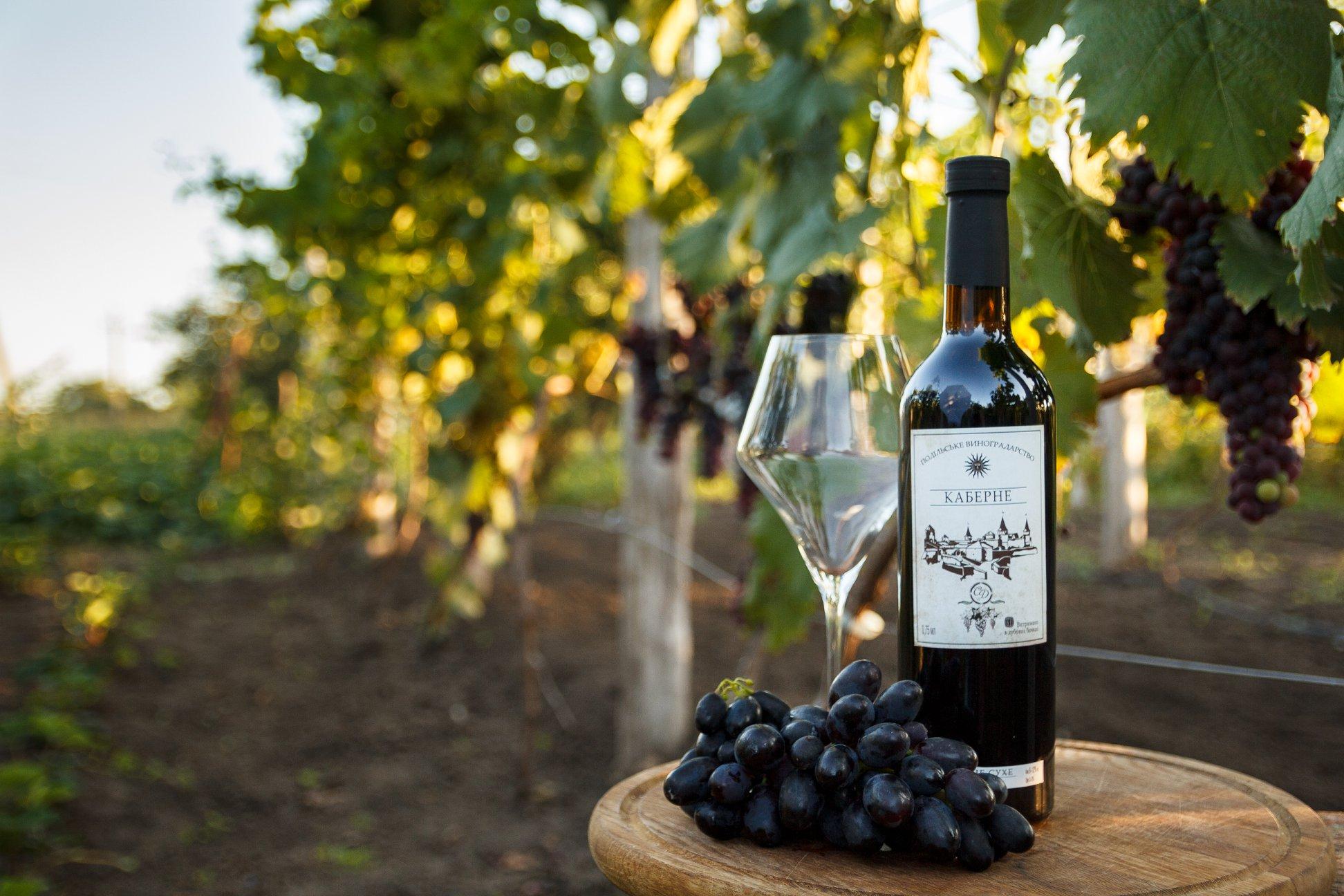 Крафтова виноробня Old Town